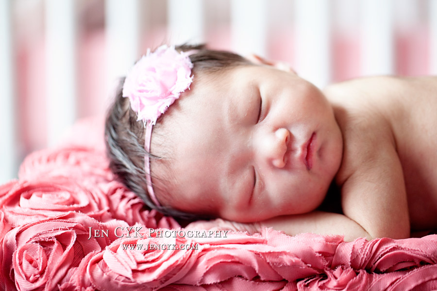 Newborn Baby Girl Photos (5)