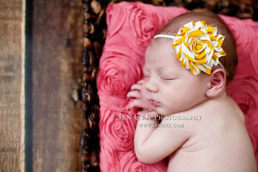 Amazing Newborn Photos Orange County Photographer (5)