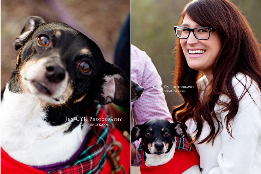 Huntington Beach Pet Photos (5)